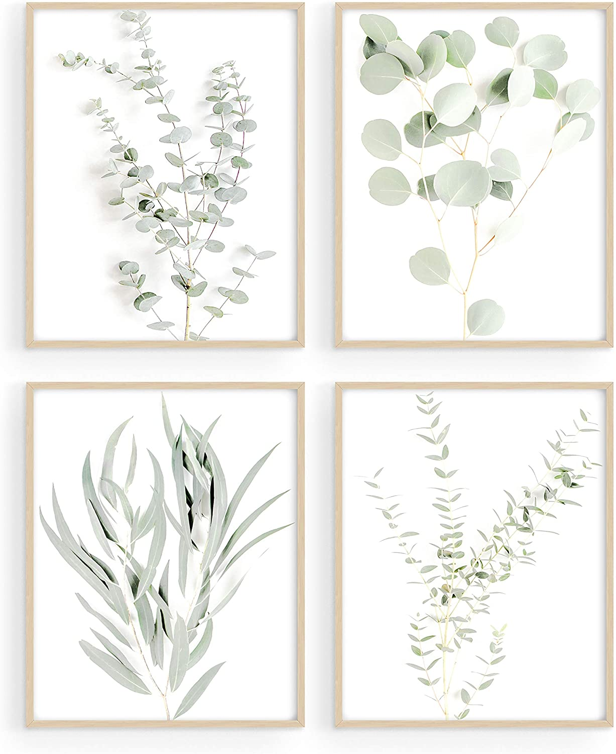 "HAUS AND HUES Botanical Plant Wall Art Prints - Set of 4 Plant Wall Decor Prints Floral Kitchen Flower Leaves Wall Art Boho Leaf Eucalyptus (11""x14"", UNFRAMED)"