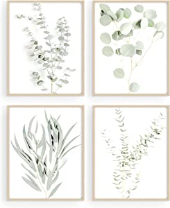 "Haus and Hues Botanical Plant Wall Art Prints - Set of 4 Plant Wall Decor Pictures Minimalist Wall Art Photo Prints Floral Kitchen Flower Leaves Wall Art Boho Leaf Eucalyptus Wall Decor Green Botanical Poster Set (8""x10"", UNFRAMED)"