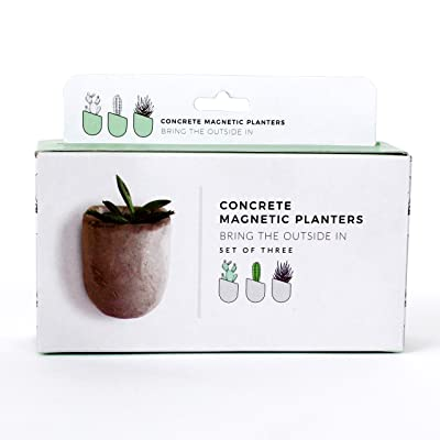 Gift Republic Magnetic Concrete Planters, 5 x 16.5 x 13 cm, Grey, 3 Pack: Kitchen & Dining