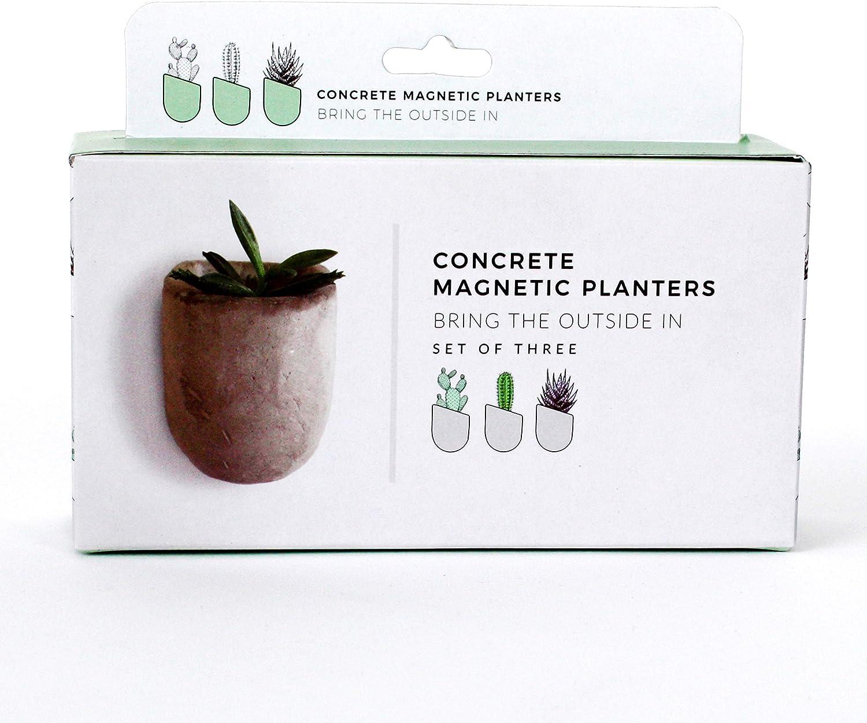 Gift Republic Magnetic Concrete Planters, 5 x 16.5 x 13 cm, Grey, 3 Pack