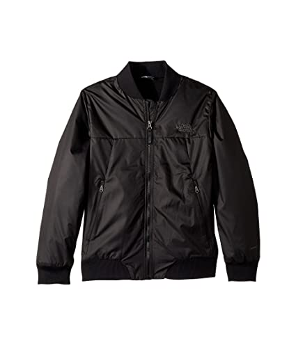 8725a5196 Amazon.com: The North Face Boys' Flurry Wind Bomber Jacket, TNF ...