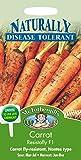 Mr. Fothergill's 13705 Paquet de 400 graines de carotte Resistafly F1