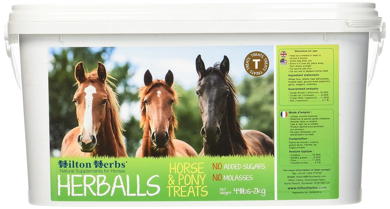 Hilton Herbs Herballs 2 kg Seau Complément Alimentaire Cheval Friandise Irrésistible, Saine et Peu Calorique