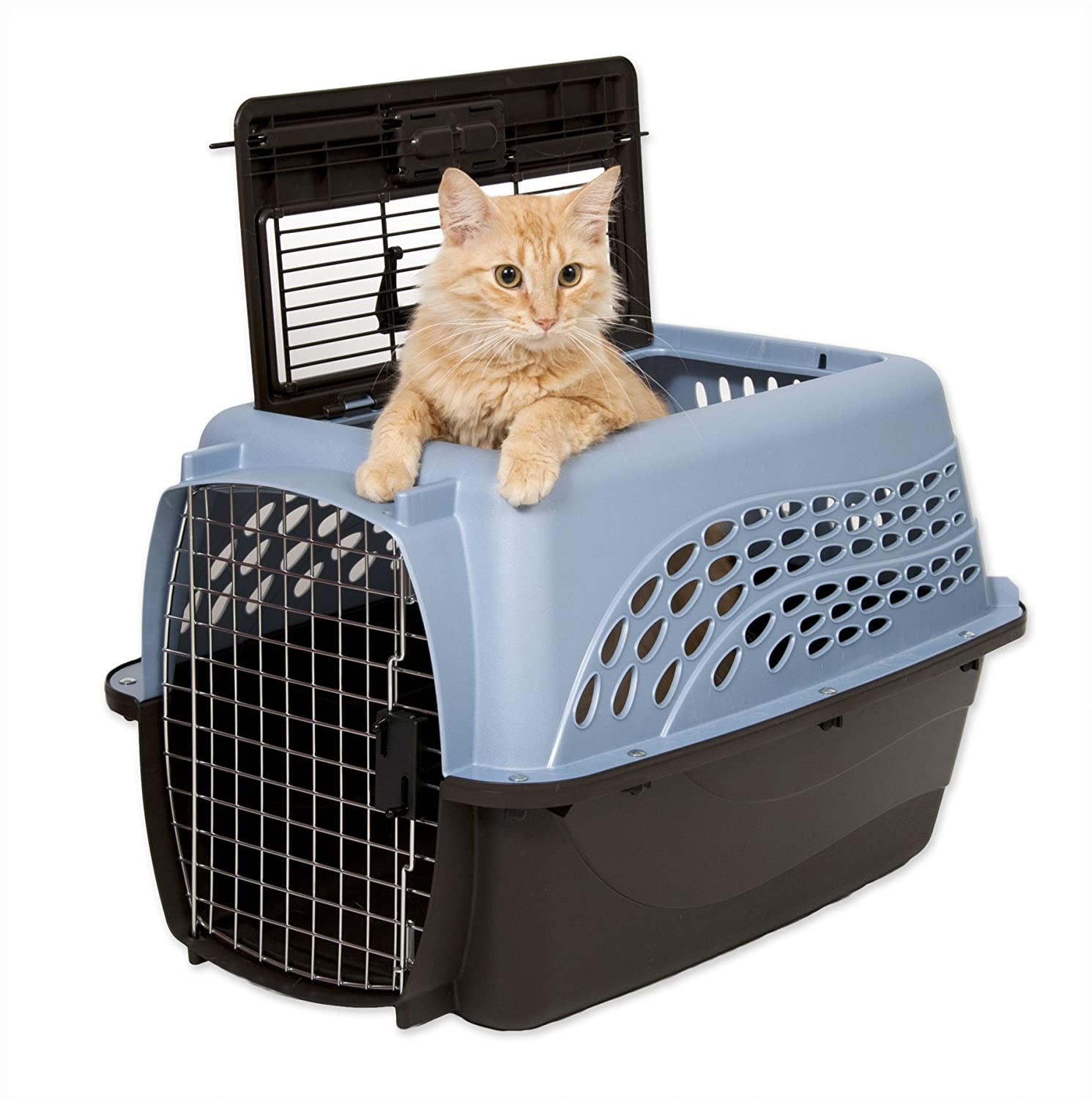 Best Travel Crates For Cats