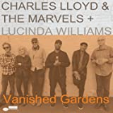 Vanished Gardens (Feat. Lucinda Williams) [2 LP]