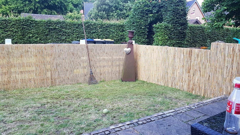 Amazon De Excolo Schilfmatte 100x600 Cm Sichtschutz Zaun