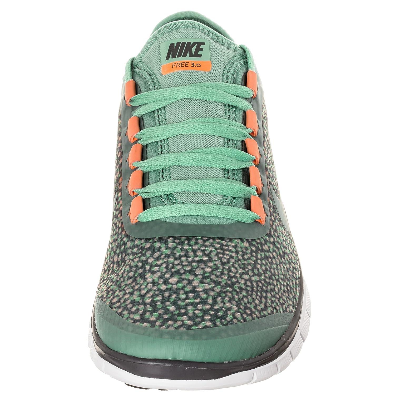 Nike Free 3.0 V5 Ext W, Damen Laufschuhe, mintbraun