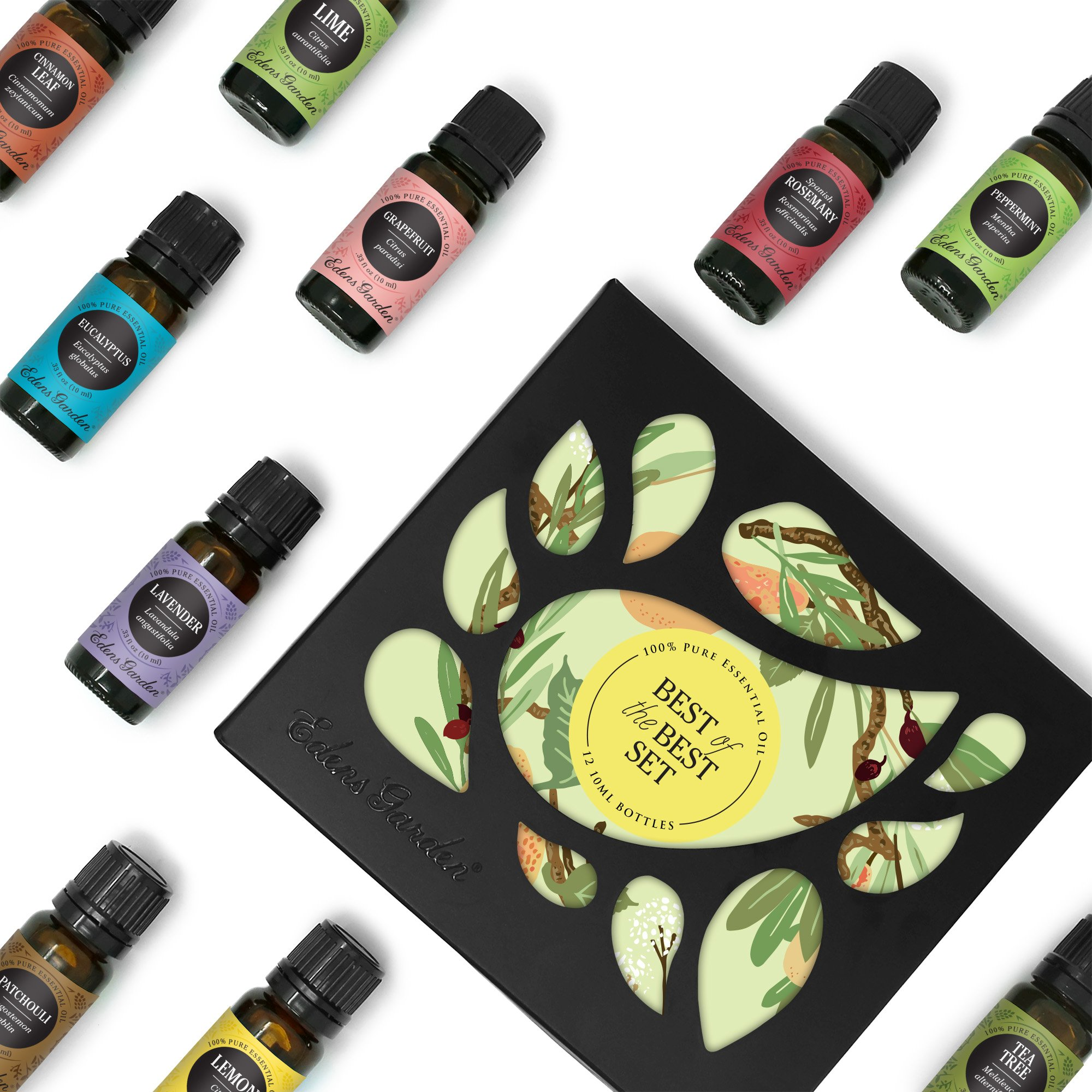 Edens Garden Best of the Best 12 Set, Top 100% Pure Essential Oil & Essential Oil Synergy Blend Aromatherapy Kit (Diffuser & Therapeutic Use, For Beginner & Seasoned Aromatherapist), 10 ml by Edens Garden
