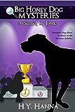 A Secret in Time (Big Honey Dog Mysteries Book 2)