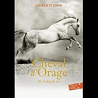 Cheval d'Orage (Tome 3) - Galop de feu