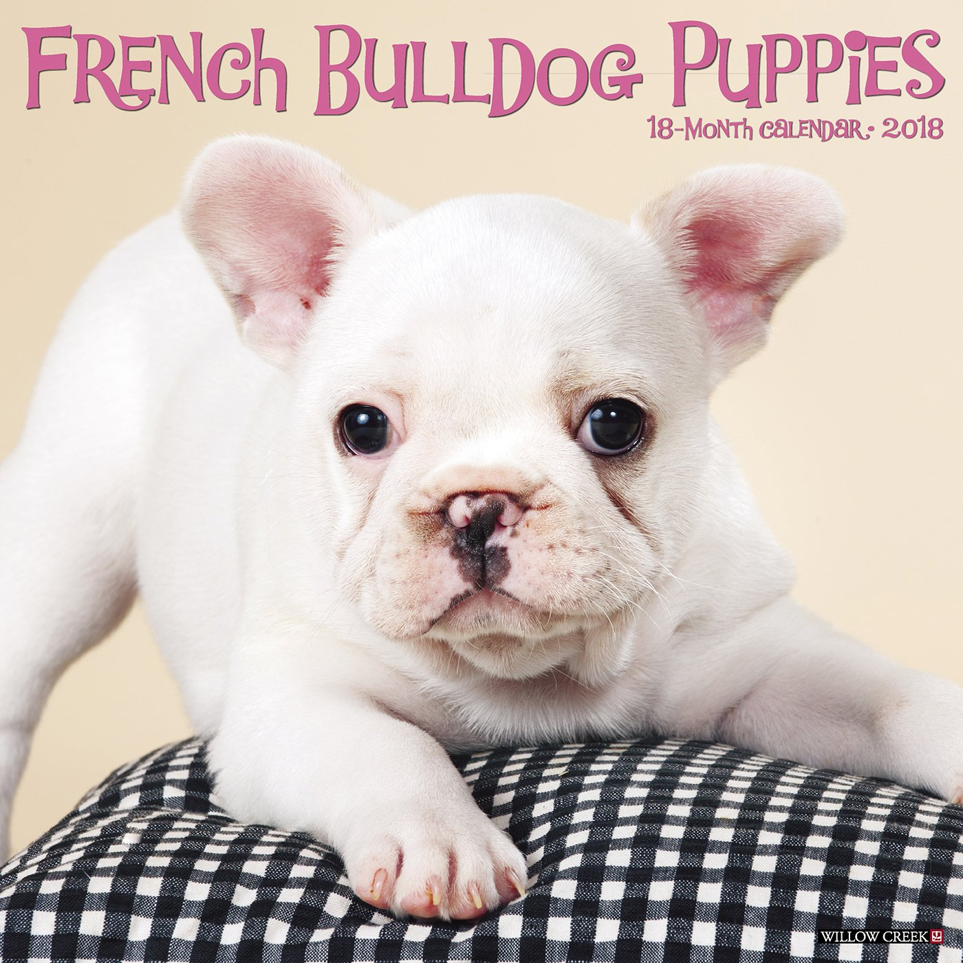 French Bulldog Puppies 2018 Calendar by 2018 Calendars
