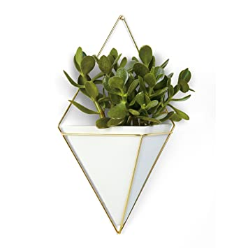 Umbra Trigg Hanging Planter Vase & Geometric Wall Decor Container ...