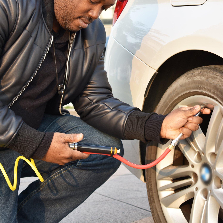 WYNNsky Heavy Duty Dual Head Tire Inflator Gauge With 12 Inch Air Hose,Tire Pressure Gauge With Storage Case by WYNNsky (Image #7)