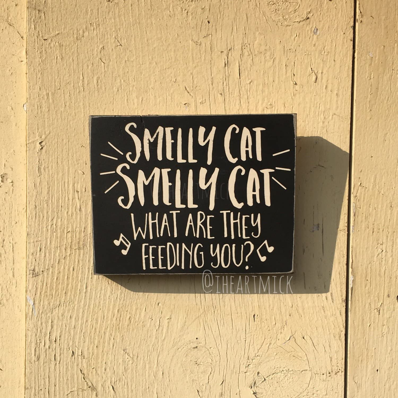Wood Plaque Phoebe Buffay Friends Inspired Smelly Cat Song 14 x 18 cm dise/ño de Gato Se/ñal de Madera
