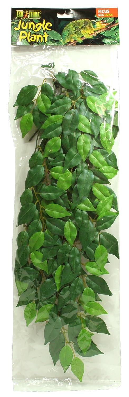 Ruscus Large Exo Terra Silk Terrarium Plant