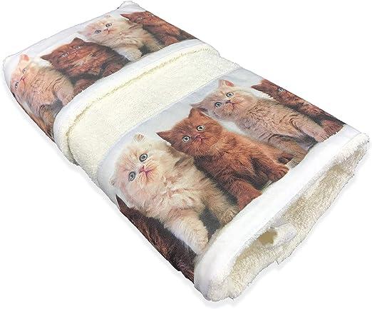 Juego de toallas, diseño de gatos: Amazon.es: Hogar