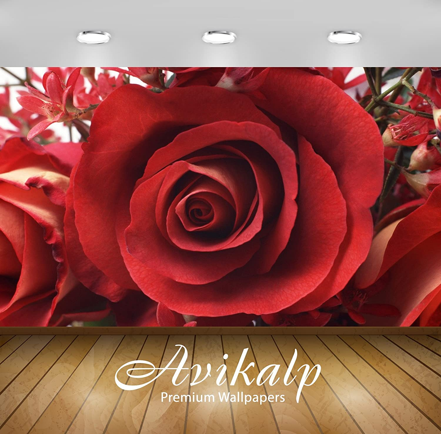 Buy Avikalp Exclusive Awi1917 Beautiful Rose Flower Full HD 3D Wallpaper (3  x 2 Feet) Online at Low Prices in India - Amazon.in