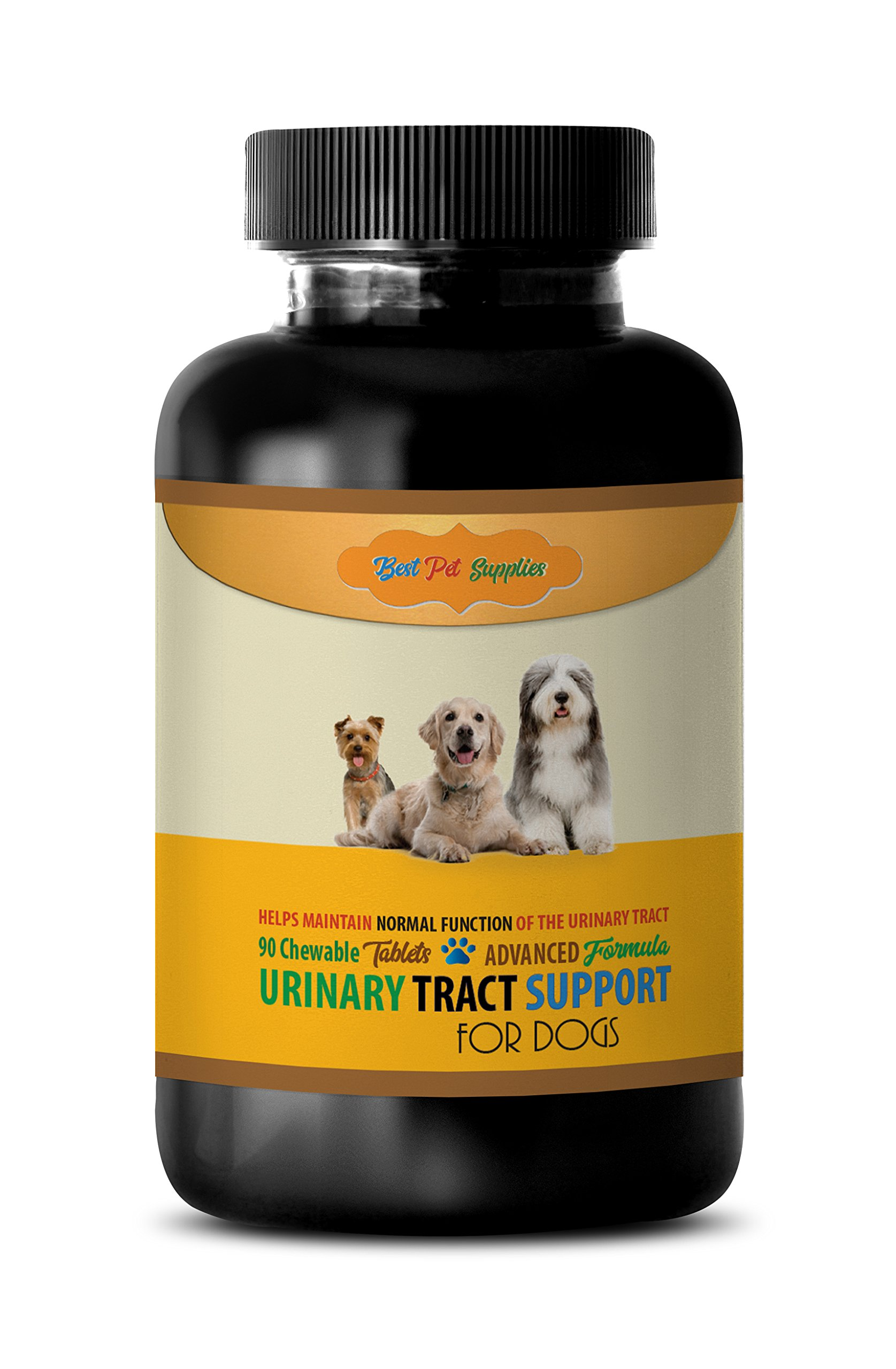 BEST PET SUPPLIES LLC dog urinary health support - ADVANCED URINARY TRACT SUPPORT - FOR DOGS - CHEWABLE - POWERFUL DOG FORMULA - cranberry for dogs uti - 90 Chews (1 Bottle)
