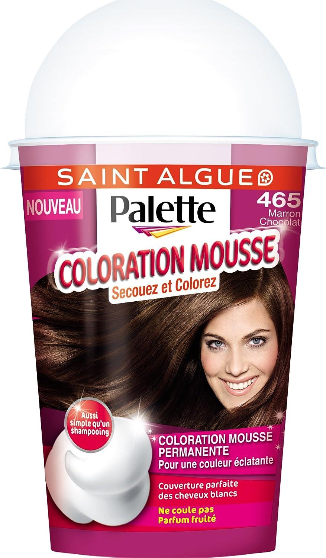 saint algue palette coloration mousse 465 marron chocolat d - Mousse Colorante Temporaire