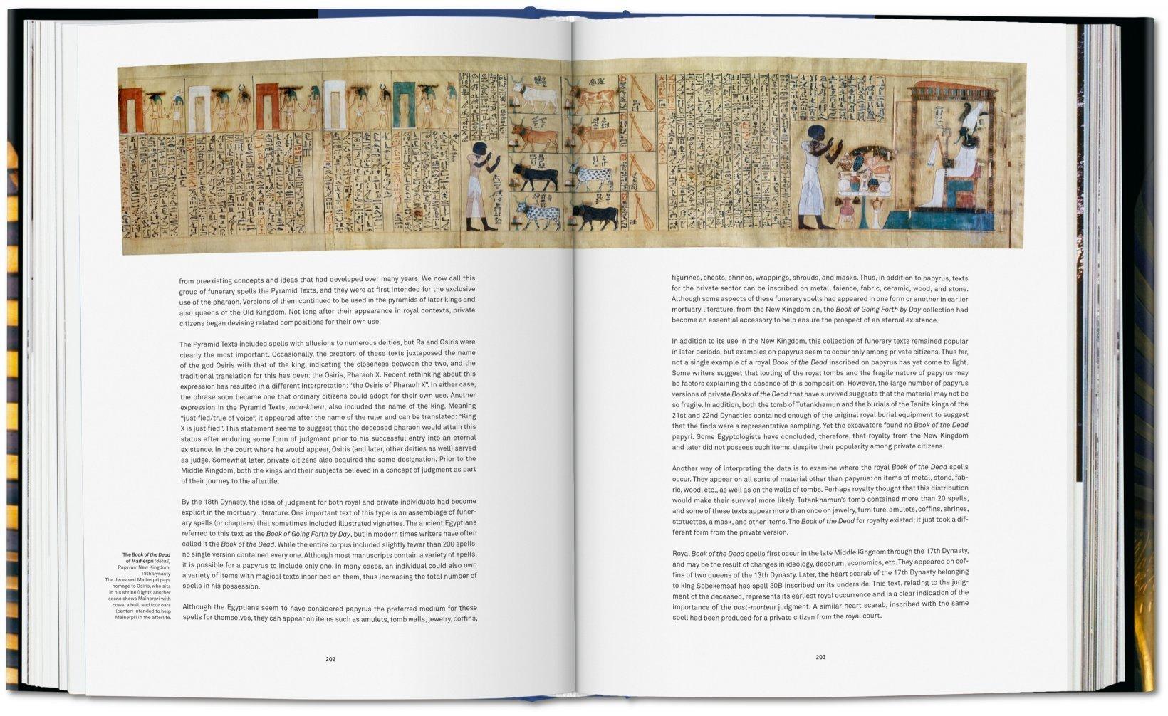 37df02c96c26 King Tut. The Journey through the Underworld  Amazon.co.uk  Sandro Vannini   9783836571463  Books