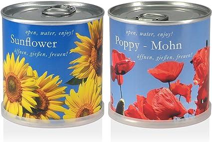 Blumen In Der Dose Geschenk Set Sonnenblume Mohn Garten
