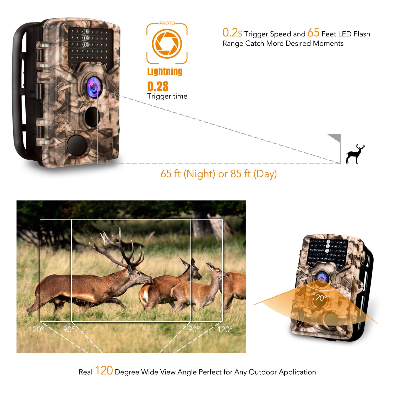"Amazon.com : AIMTOM Trail Hunting Camera 16MP Image 1080P Video 46Pcs IR  LEDs Infrared 0.2S Trigger Time Waterproof Night Vision 120° Wide Angle  2.4"" LCD ..."