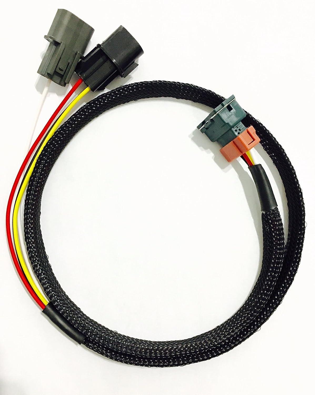 Amazon.com: Mitsubishi Eclipse/Talon 6 bolt swap 1g CAS cam angle sensor  adapter harness (95-96): Automotive