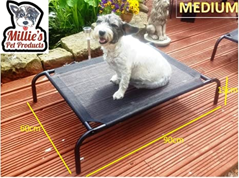 Miilies Pet Products - Cama elevada para perro, portátil, impermeable, para exteriores,