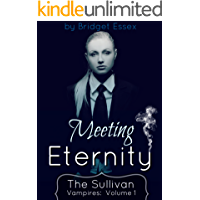Meeting Eternity (The Sullivan Vampires Book 1)