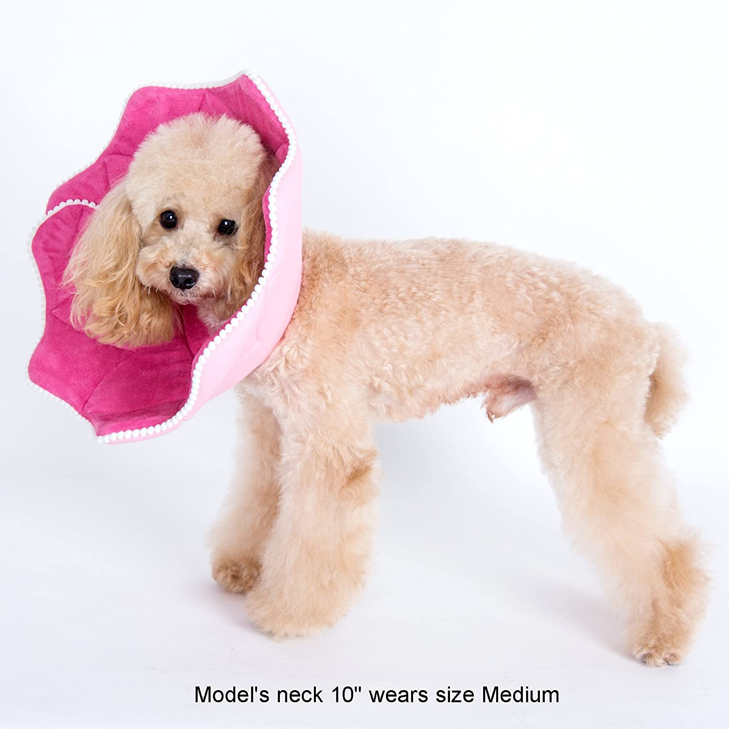 Size: Medium - Pattern: Pink Pom Pom for Dogs and Cats Noah Recovery Collar Alfie Pet