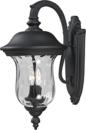Z-Lite 534M-BK Armstrong Outdoor Wall Light, Aluminum Frame, Black Finish and Clear Water Glass Shade of Glass Material