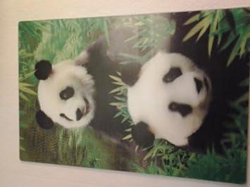 amazon com two giant pandas 3d art postcard easel 4x6 health