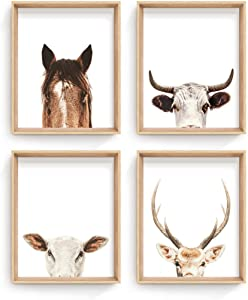 """Haus and Hues Set of 4 Rustic Farm Animal Pictures - Horse Deer Cow and Pig Pictures Wall Decor 