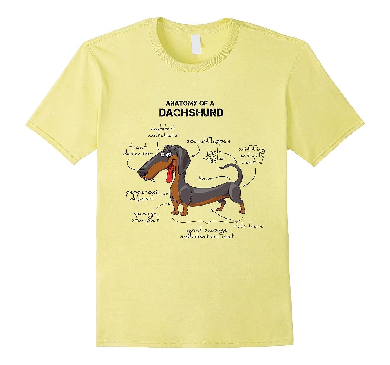 Anatomy Of A Dachshund - Funny Dog T-Shirt-ANZ - Anztshirt