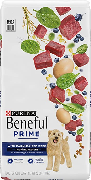 Top 10 Purina Beneful Beef Dog Food
