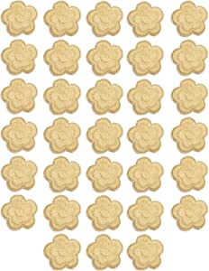 MSCFTFB 33 Pieces Small Garden Flower Iron on Patches Embroidered Patches Floral Turnera Sew on Appliques Clothing Jackets Backpack Shoes Repairing Decorations Apparel Embellishments (Beige)