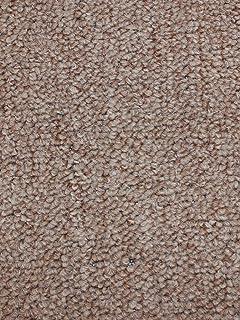 Amazon.com : 10\'x12\' - Hickory - Indoor/Outdoor Area Rug Carpet ...