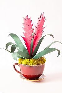 (Paper flower maker) Maria Noble