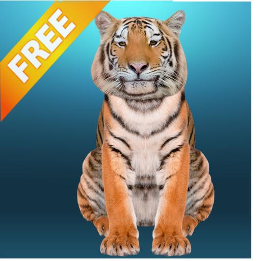 Talking Tiger - Growling Tiger