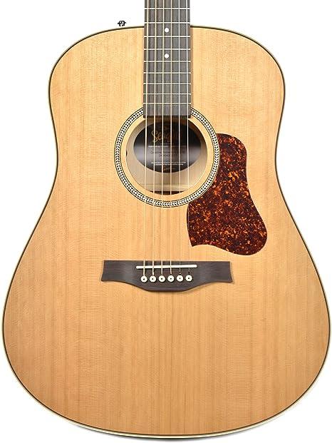 Gaviota Costa impulso a/E HG – Guitarra electroacústica: Amazon.es ...
