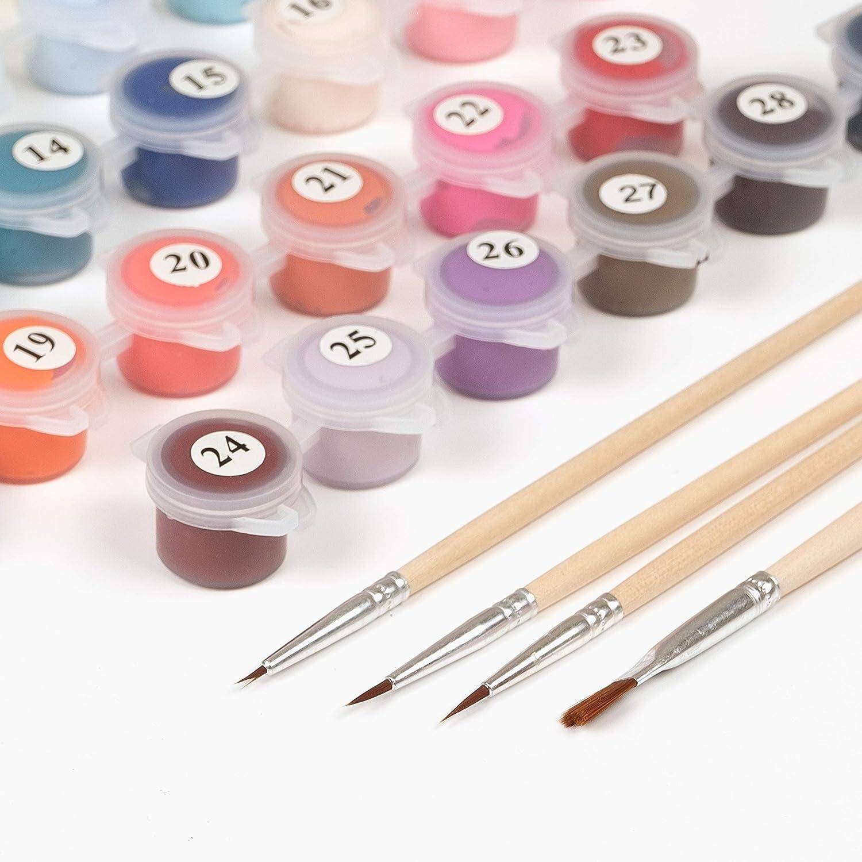 Pintura por números para adultos: kit de pintura de números ...