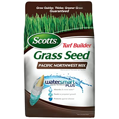 Scotts Turf Builder Pacific Northwest Grass Seed Mix Bag, 3-Pound (Not sold in LA) : Grass Plants : Garden & Outdoor