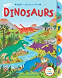 My First Search and Find: Dinosaurs