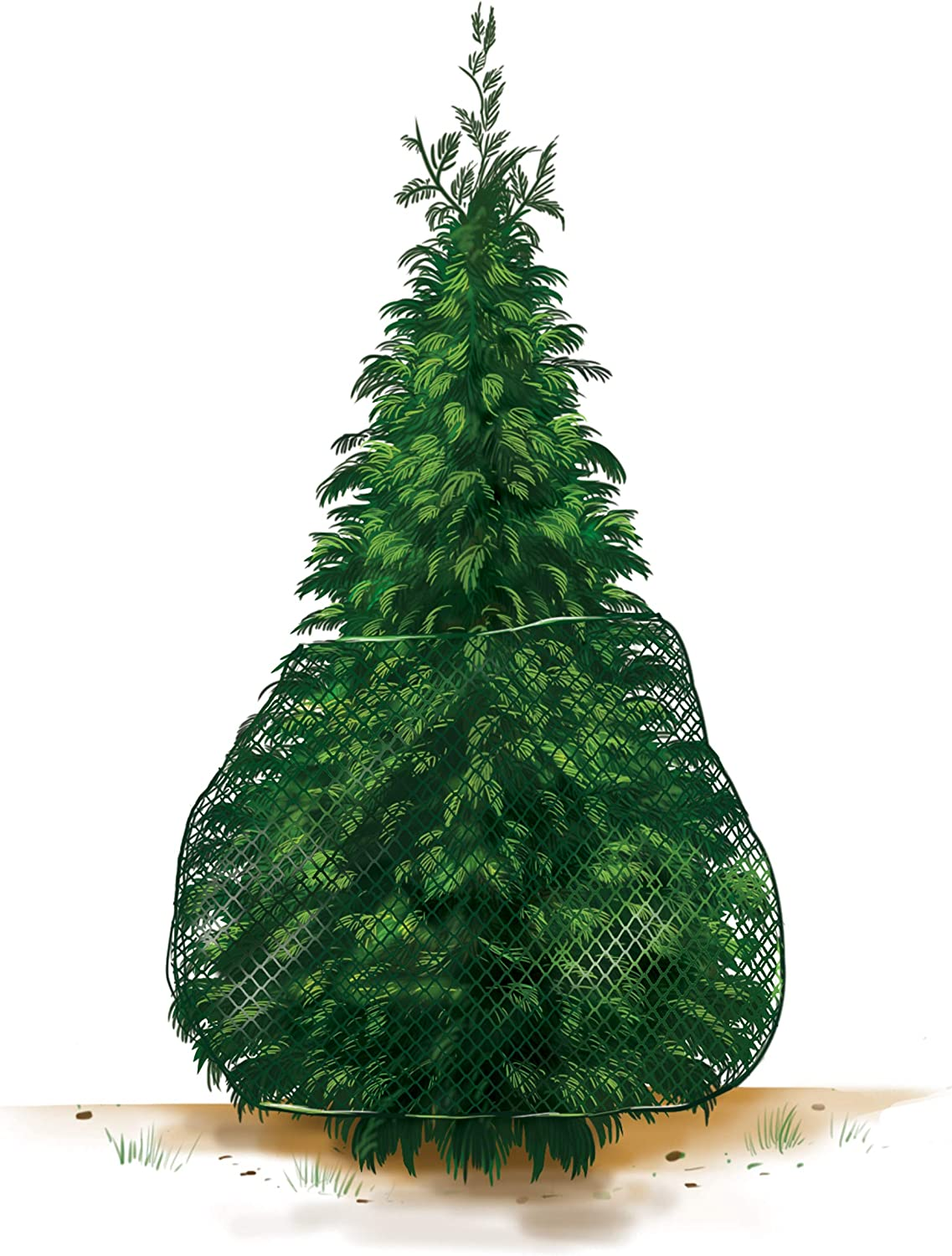 Arborvitae Deer Netting Protection- for Arborvitae Trees Up to 10' Tall
