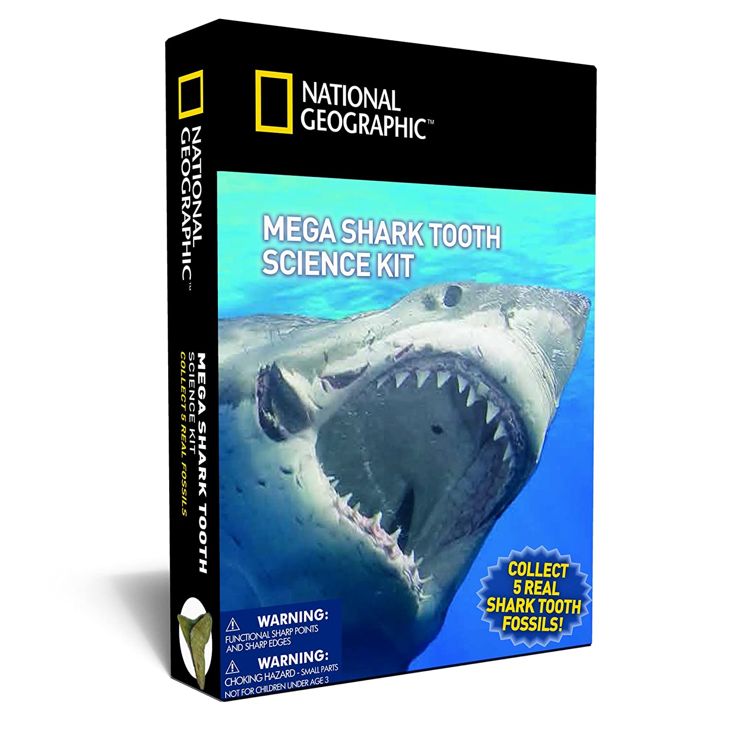 NATIONAL GEOGRAPHIC Mega Shark Tooth Science – Collect 5 Real Shark Teeth