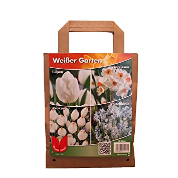 Dominik Blumen und Pflanzen, Blumenzwiebel-Sortiment \