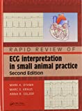 Rapid Review of ECG Interpretation in Small Animal