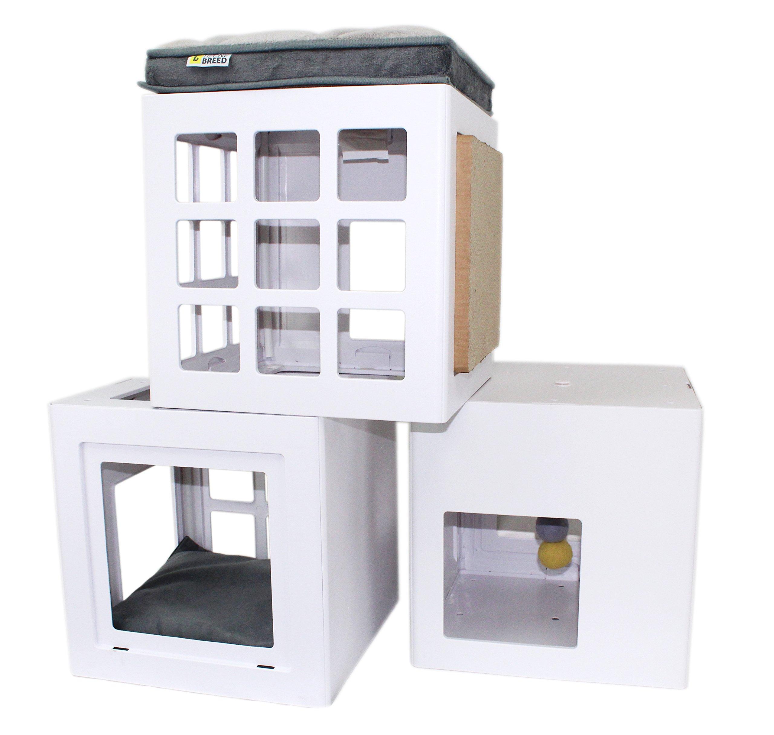 BeOneBreed Katt3 Trendy Cat House/Tree Starting Kit