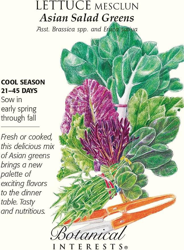 Organic Mesclun Gourmet Baby Greens Lettuce Seeds Botanical Interests 1 gram
