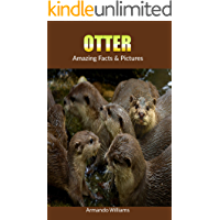 Otter: Amazing Facts & Pictures